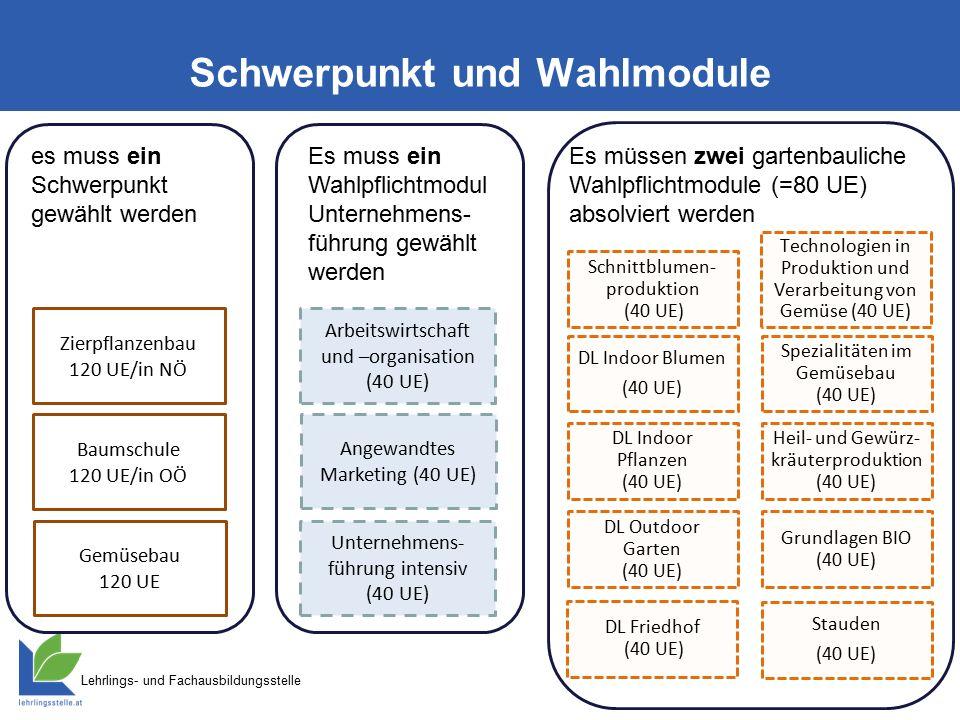 Lehrlings- und Fachausbildungsstelle Zulassung zur Meisterprüfung (Abschlussprüfung) Gemäß NÖ LW- Berufsausb.
