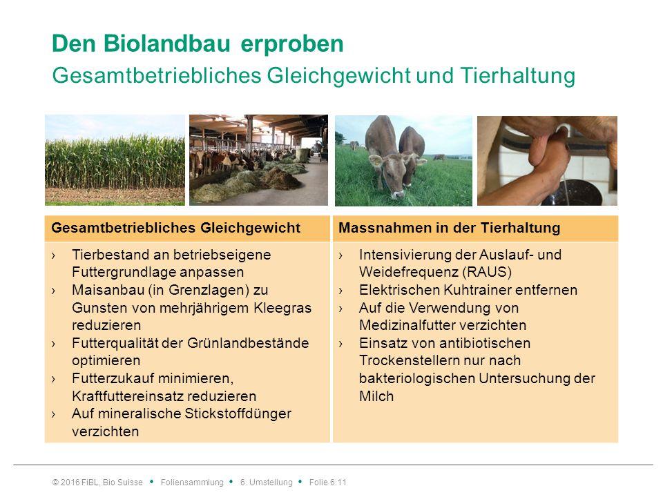 Den Biolandbau erproben Gesamtbetriebliches Gleichgewicht und Tierhaltung Gesamtbetriebliches GleichgewichtMassnahmen in der Tierhaltung ›Tierbestand