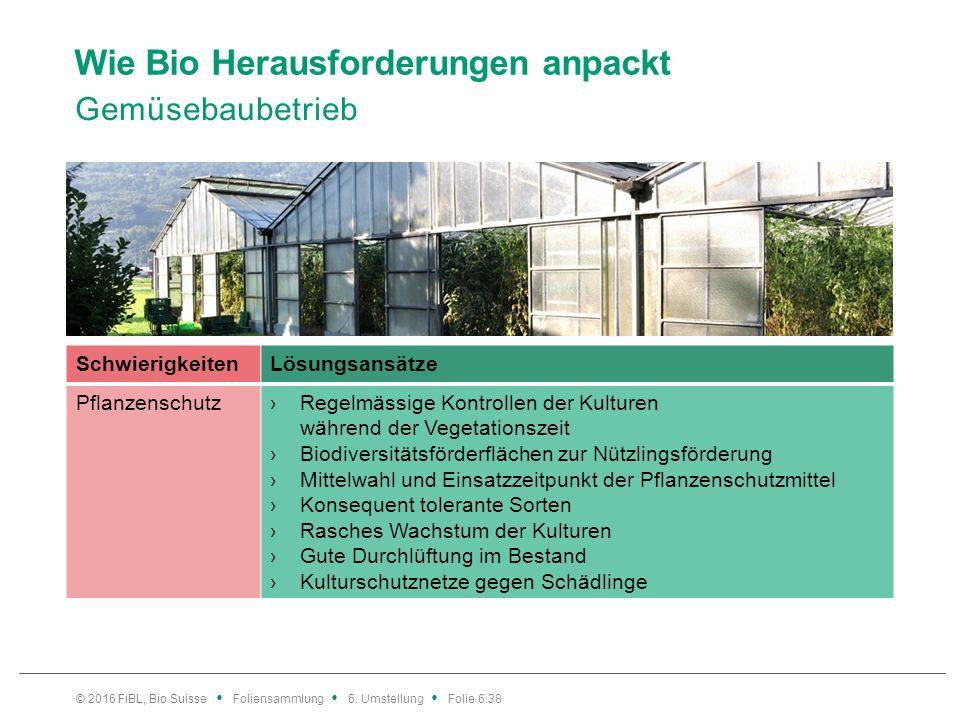 Wie Bio Herausforderungen anpackt Gemüsebaubetrieb © 2016 FiBL, Bio Suisse Foliensammlung 6. Umstellung Folie 6.38 SchwierigkeitenLösungsansätze Pflan