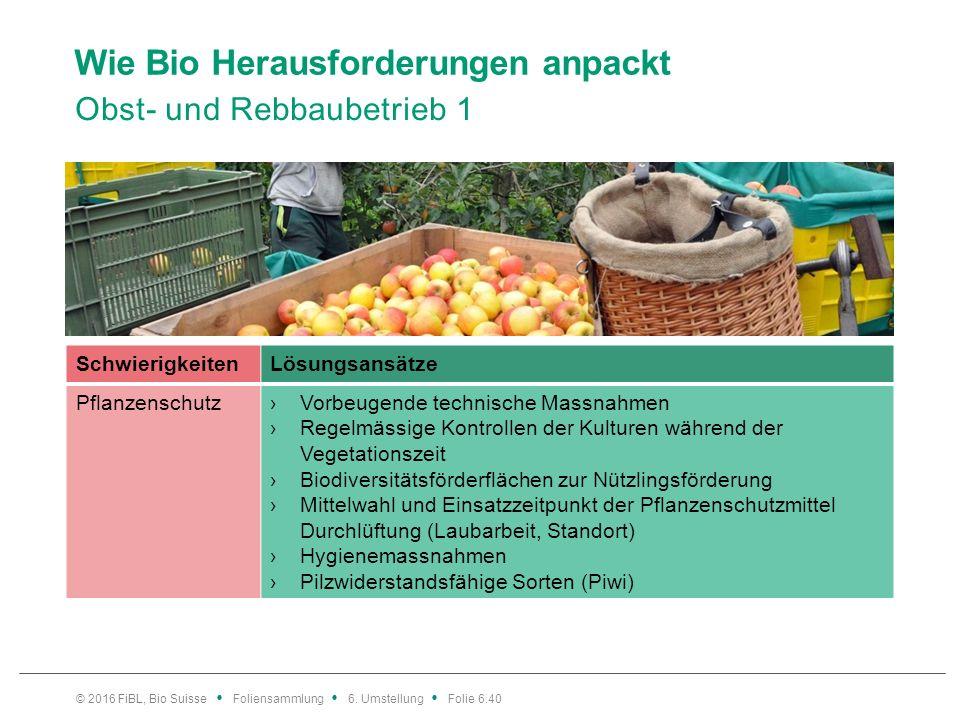 Wie Bio Herausforderungen anpackt Obst- und Rebbaubetrieb 1 © 2016 FiBL, Bio Suisse Foliensammlung 6. Umstellung Folie 6.40 SchwierigkeitenLösungsansä