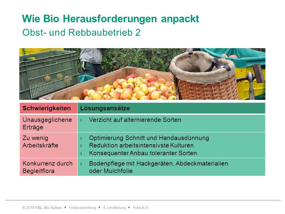 Wie Bio Herausforderungen anpackt Obst- und Rebbaubetrieb 2 © 2016 FiBL, Bio Suisse Foliensammlung 6. Umstellung Folie 6.41 SchwierigkeitenLösungsansä
