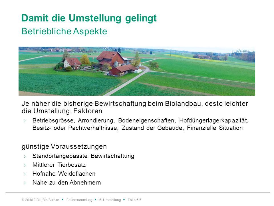 Erfolgreich in den Biolandbau starten Betriebsstrategie neu denken, Vermarktung klären 1.