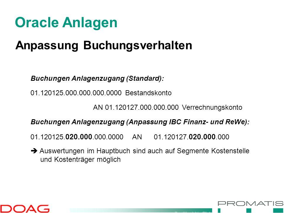 Den Wandel im Blick Oracle Anlagen Anpassung Buchungsverhalten Buchungen Anlagenzugang (Standard): 01.120125.000.000.000.0000 Bestandskonto AN 01.1201