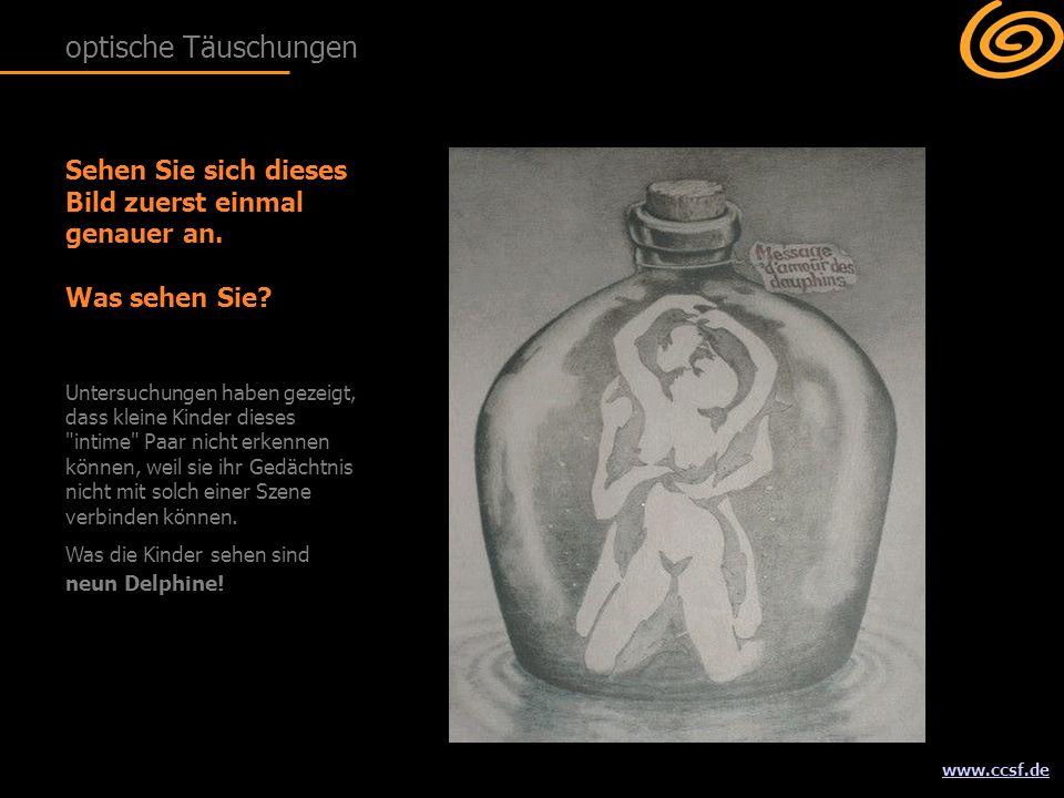 www.ccsf.de Sehen Sie sich dieses Bild zuerst einmal genauer an.