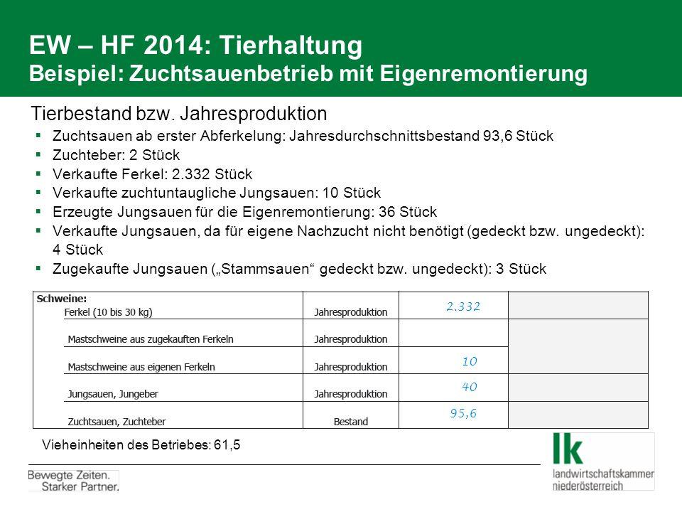 EW – HF 2014: Tierhaltung Beispiel: Zuchtsauenbetrieb mit Eigenremontierung Tierbestand bzw. Jahresproduktion  Zuchtsauen ab erster Abferkelung: Jahr