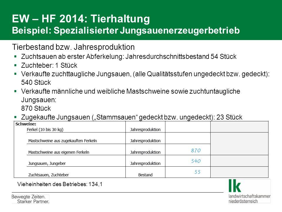 EW – HF 2014: Tierhaltung Beispiel: Spezialisierter Jungsauenerzeugerbetrieb Tierbestand bzw. Jahresproduktion  Zuchtsauen ab erster Abferkelung: Jah