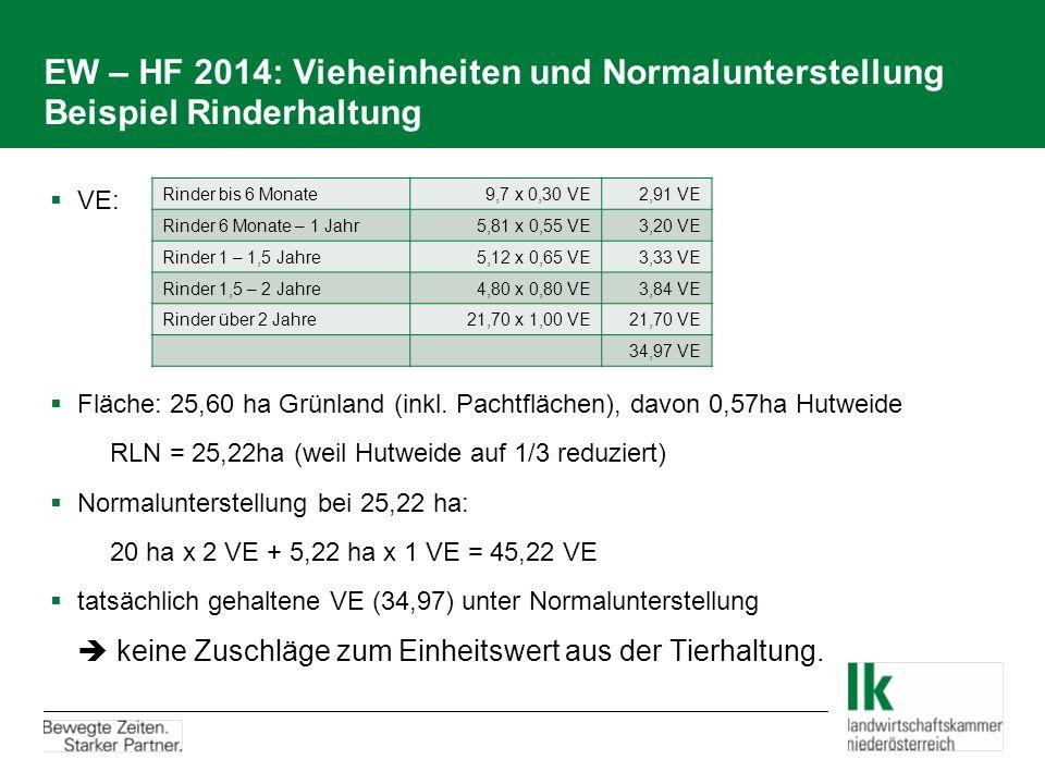 EW – HF 2014: Vieheinheiten und Normalunterstellung Beispiel Rinderhaltung  VE:  Fläche: 25,60 ha Grünland (inkl. Pachtflächen), davon 0,57ha Hutwei