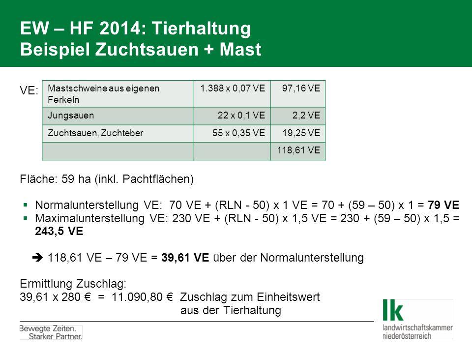 EW – HF 2014: Tierhaltung Beispiel Zuchtsauen + Mast VE: Fläche: 59 ha (inkl. Pachtflächen)  Normalunterstellung VE: 70 VE + (RLN - 50) x 1 VE = 70 +