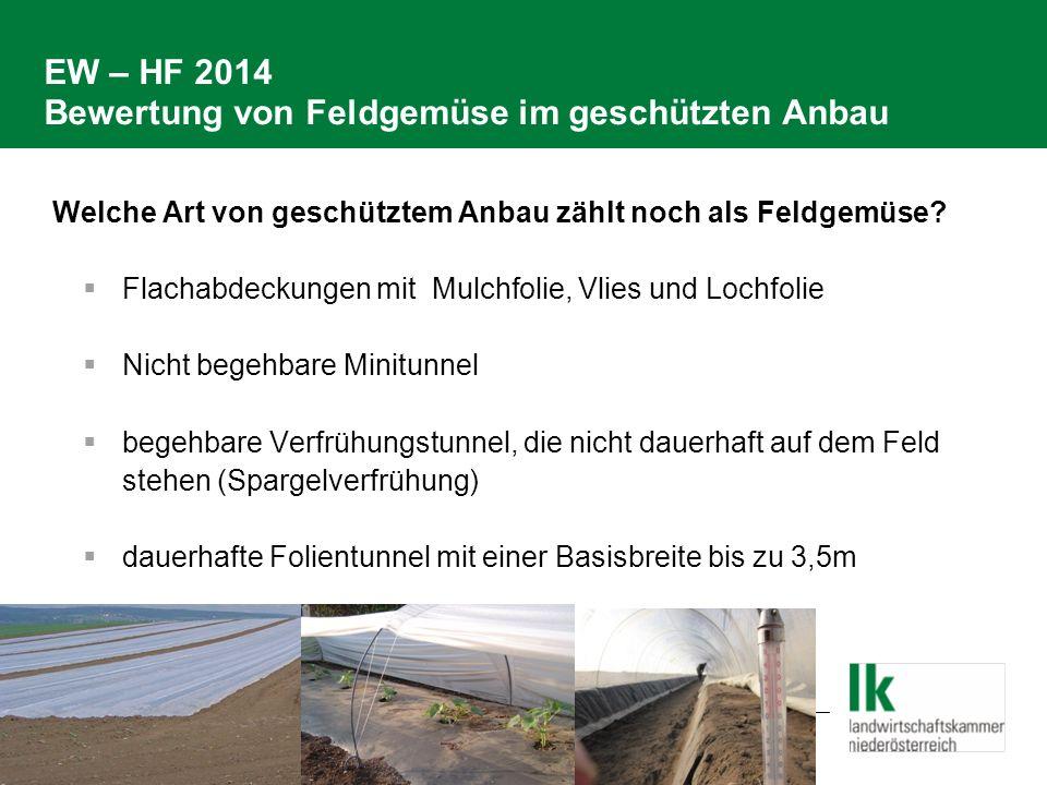 EW – HF 2014 Bewertung von Feldgemüse im geschützten Anbau Welche Art von geschütztem Anbau zählt noch als Feldgemüse?  Flachabdeckungen mit Mulchfol