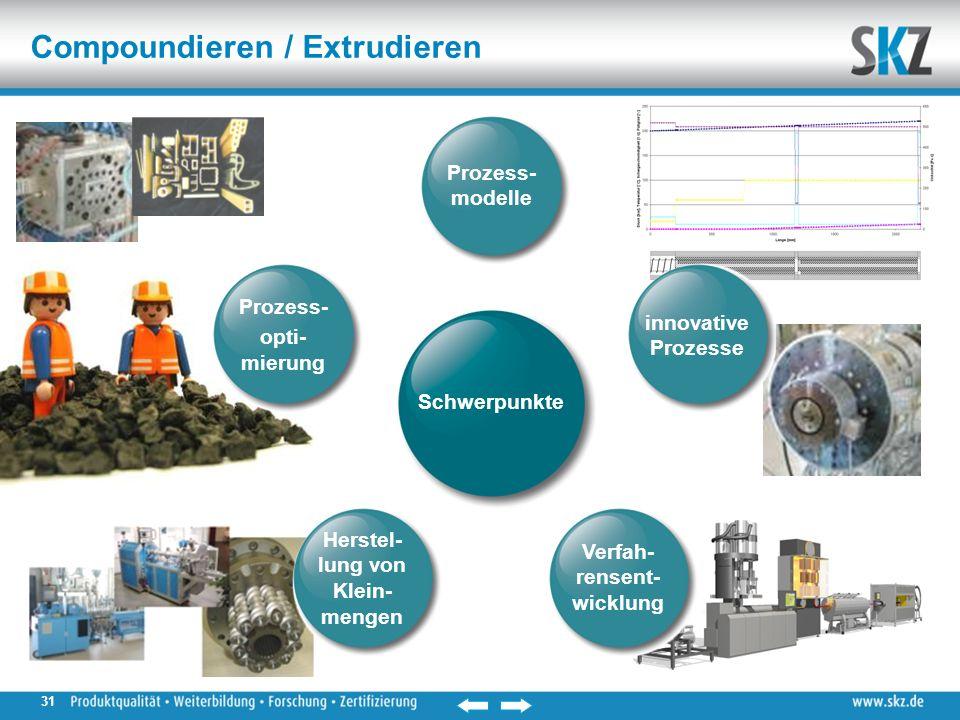 Compoundieren / Extrudieren Verfah- rensent- wicklung innovative Prozesse Herstel- lung von Klein- mengen Prozess- opti- mierung Prozess- modelle Schwerpunkte 31