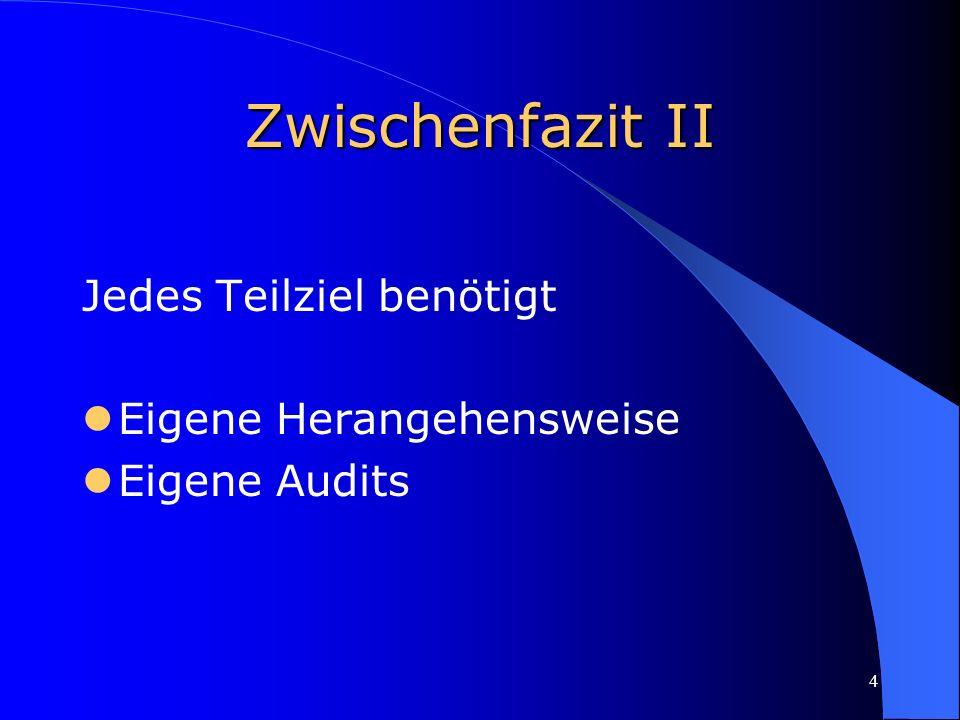 4 Zwischenfazit II Jedes Teilziel benötigt Eigene Herangehensweise Eigene Audits