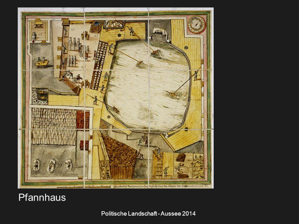 Politische Landschaft - Aussee 2014 Pfannhaus