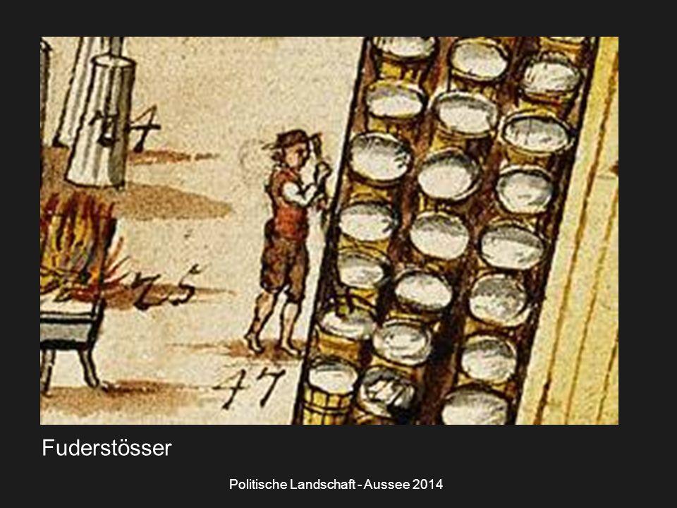 Politische Landschaft - Aussee 2014 Fuderstösser