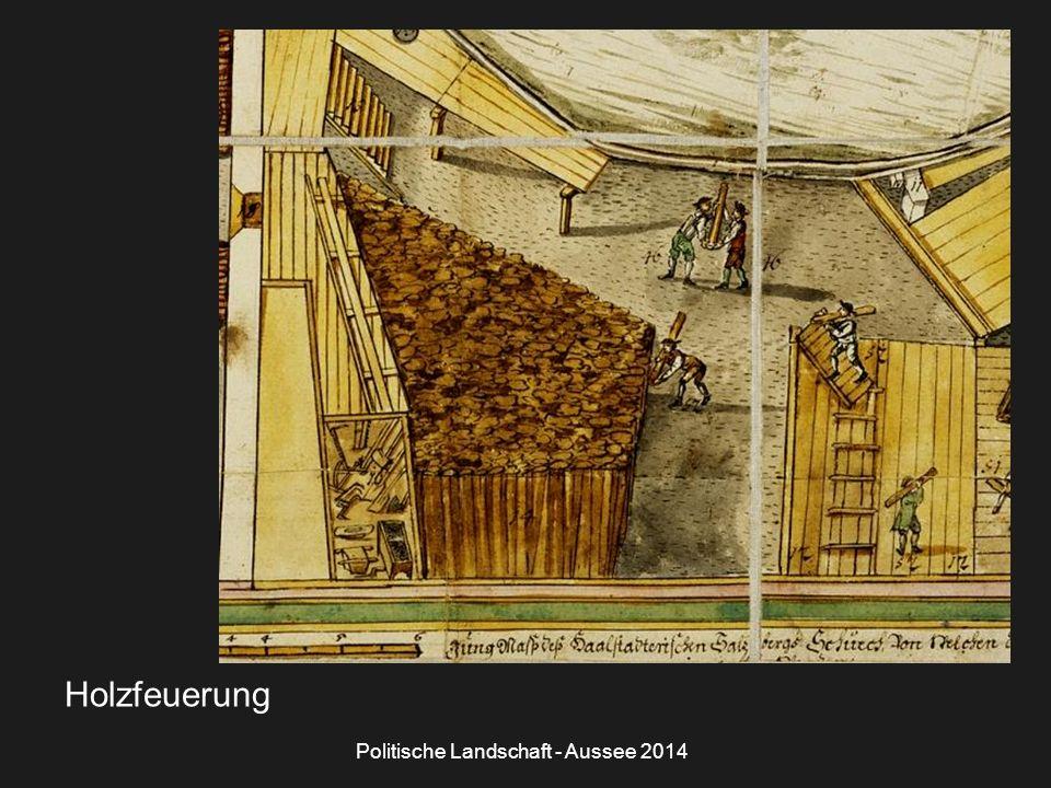 Politische Landschaft - Aussee 2014 Holzfeuerung