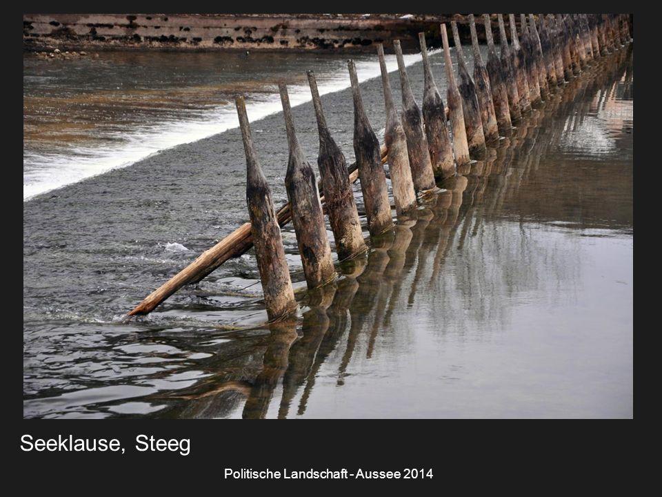 Politische Landschaft - Aussee 2014 Seeklause, Steeg