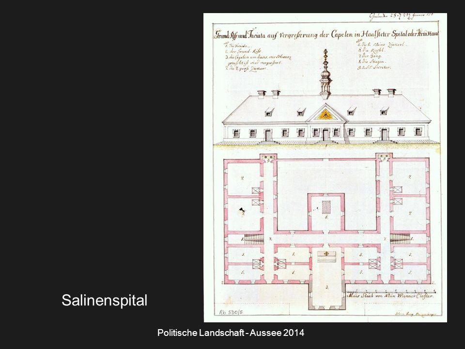 Politische Landschaft - Aussee 2014 Salinenspital