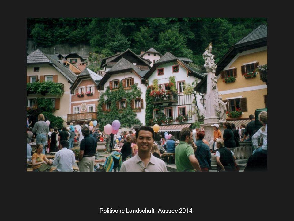 Politische Landschaft - Aussee 2014