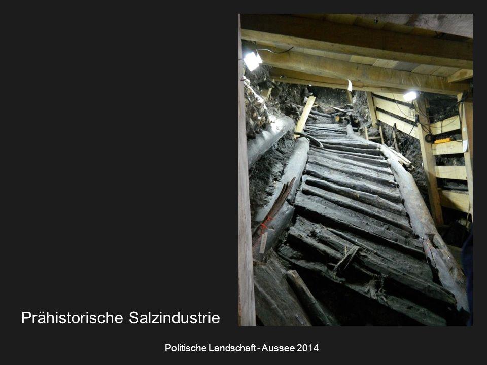 Politische Landschaft - Aussee 2014 Prähistorische Salzindustrie