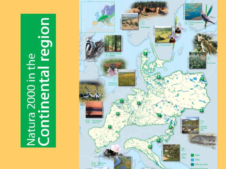 Managementpläne Der Schutz der Gebiete von gemeinschaftlicher Bedeutung ist in Artikel 6 geregelt.