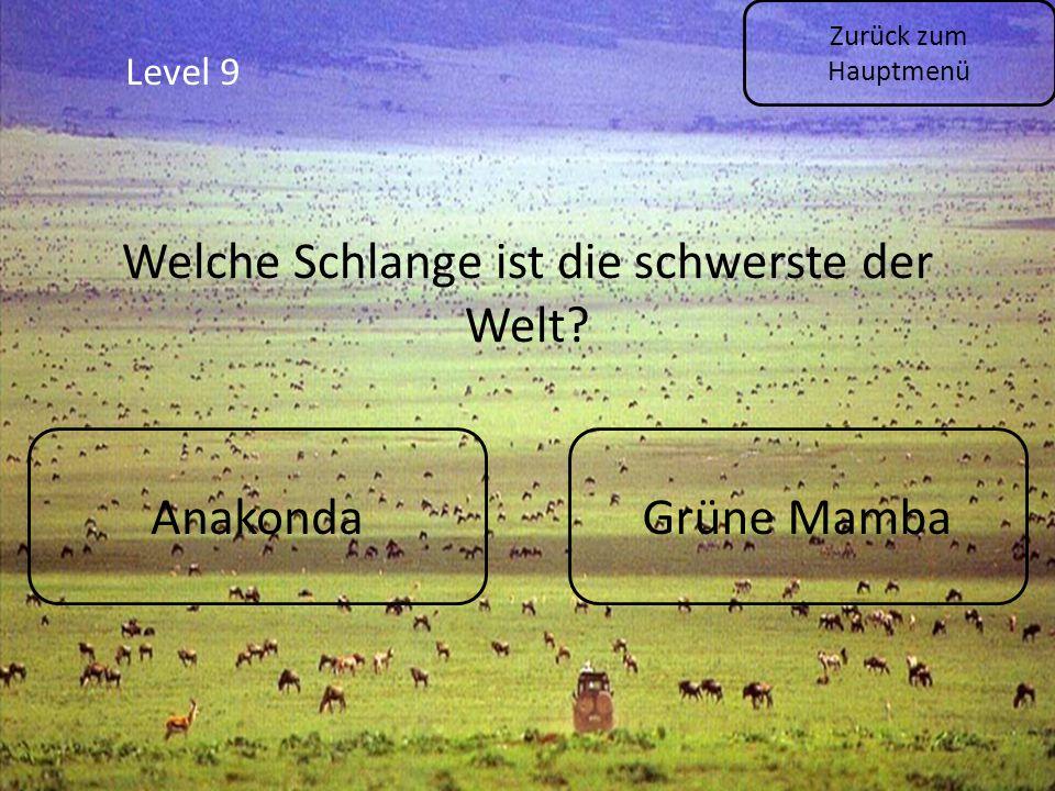Level 9 Zurück zum Hauptmenü AnakondaGrüne Mamba Welche Schlange ist die schwerste der Welt?