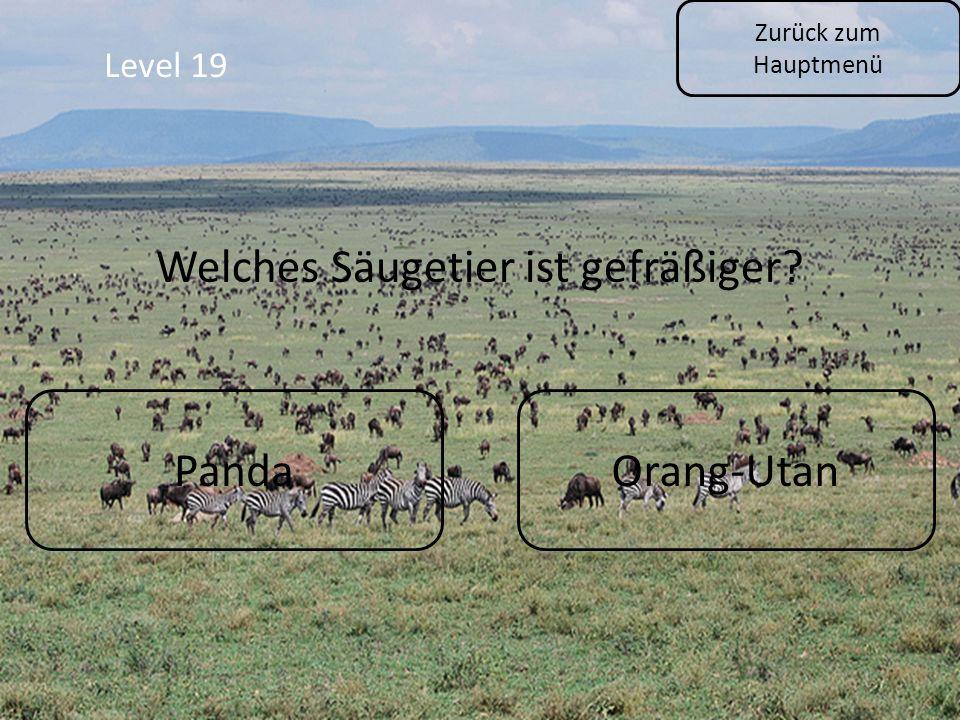 Zurück zum Hauptmenü Level 19 PandaOrang-Utan Welches Säugetier ist gefräßiger?