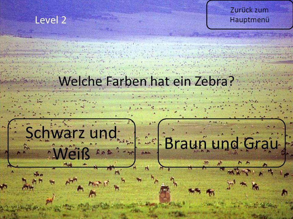 Level 2 Zurück zum Hauptmenü Welche Farben hat ein Zebra? Schwarz und Weiß Braun und Grau