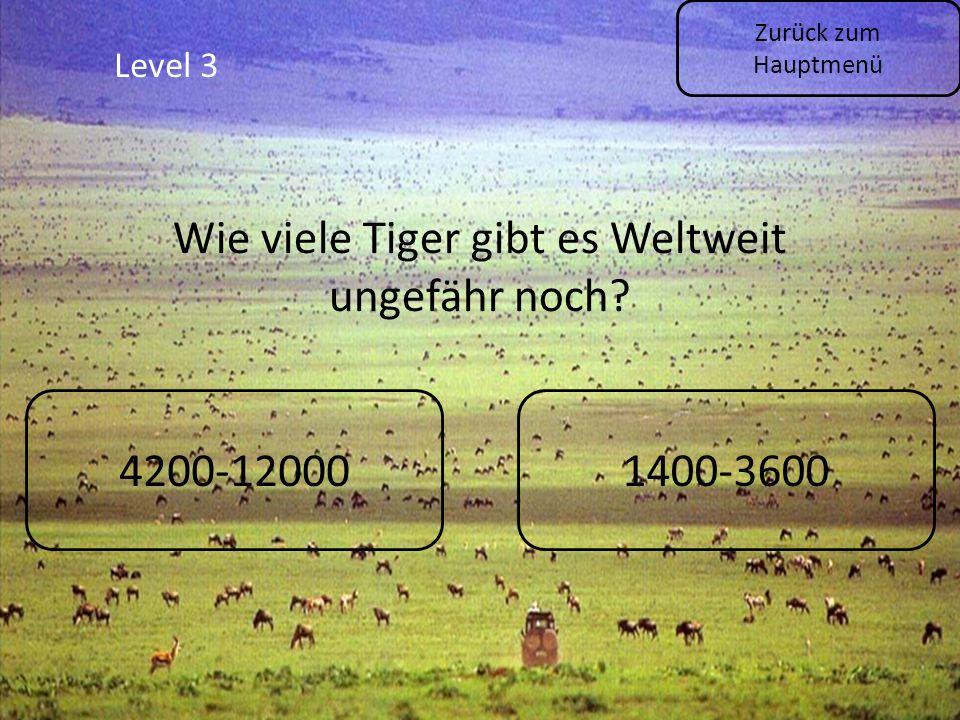 Level 3 Zurück zum Hauptmenü Wie viele Tiger gibt es Weltweit ungefähr noch? 4200-120001400-3600