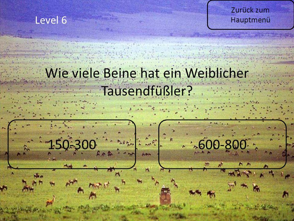 Zurück zum Hauptmenü Level 6 150-300600-800 Wie viele Beine hat ein Weiblicher Tausendfüßler?
