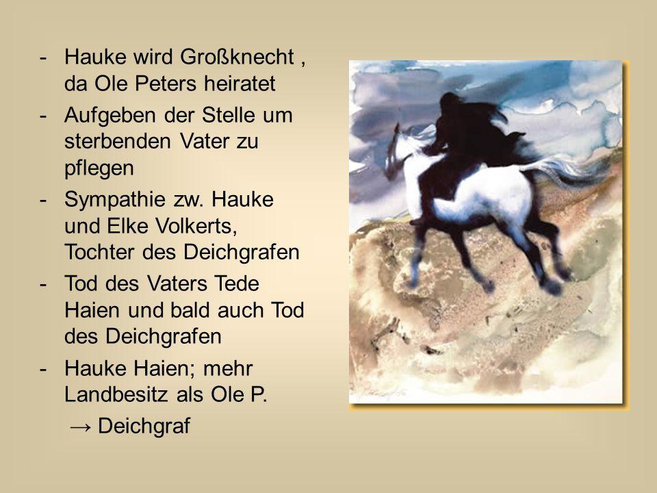 -Hauke wird Großknecht, da Ole Peters heiratet -Aufgeben der Stelle um sterbenden Vater zu pflegen -Sympathie zw. Hauke und Elke Volkerts, Tochter des