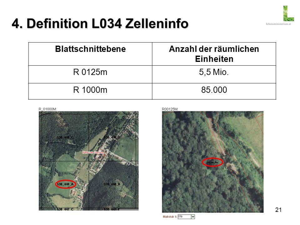 21 4. Definition L034 Zelleninfo BlattschnittebeneAnzahl der räumlichen Einheiten R 0125m5,5 Mio.