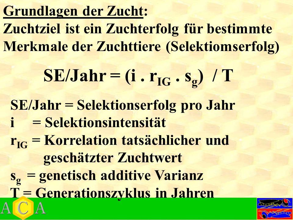 Grundlagen der Zucht: Zuchtziel ist ein Zuchterfolg für bestimmte Merkmale der Zuchttiere (Selektiomserfolg) SE/Jahr = (i.