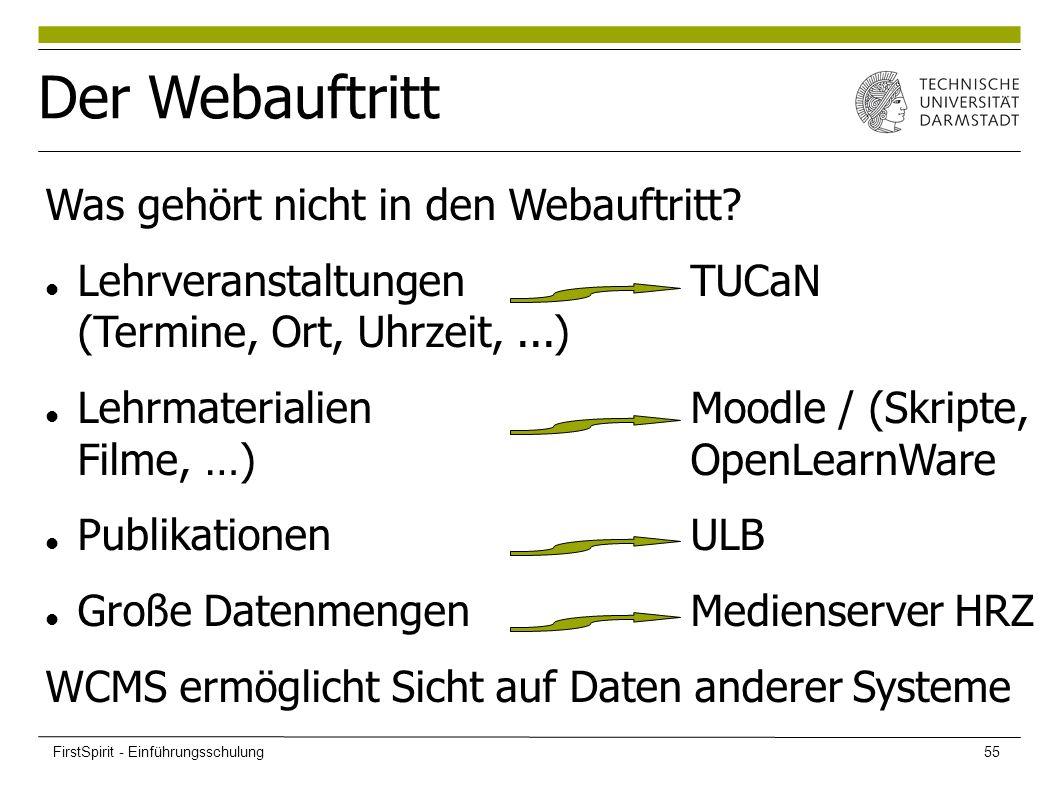 Der Webauftritt Was gehört nicht in den Webauftritt? LehrveranstaltungenTUCaN (Termine, Ort, Uhrzeit,...) Lehrmaterialien Moodle / (Skripte, Filme, …)