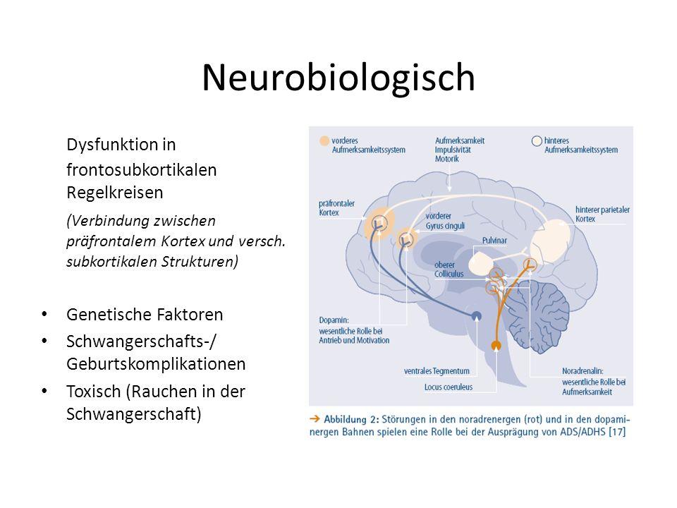 Neurobiologisch Dysfunktion in frontosubkortikalen Regelkreisen (Verbindung zwischen präfrontalem Kortex und versch.