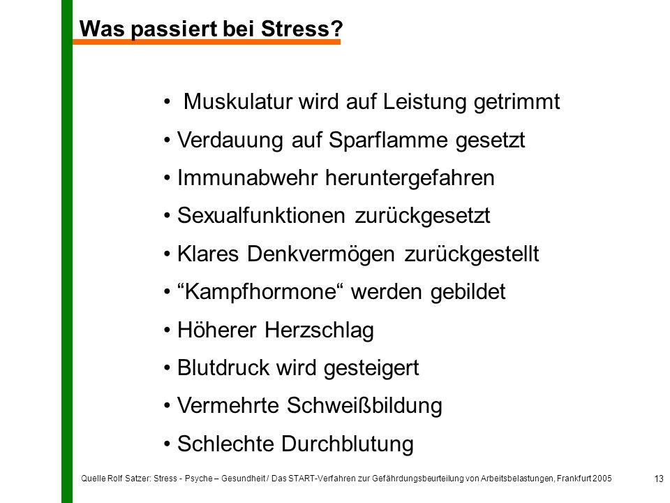 Quelle Rolf Satzer: Stress - Psyche – Gesundheit / Das START-Verfahren zur Gefährdungsbeurteilung von Arbeitsbelastungen, Frankfurt 2005 13 Was passiert bei Stress.