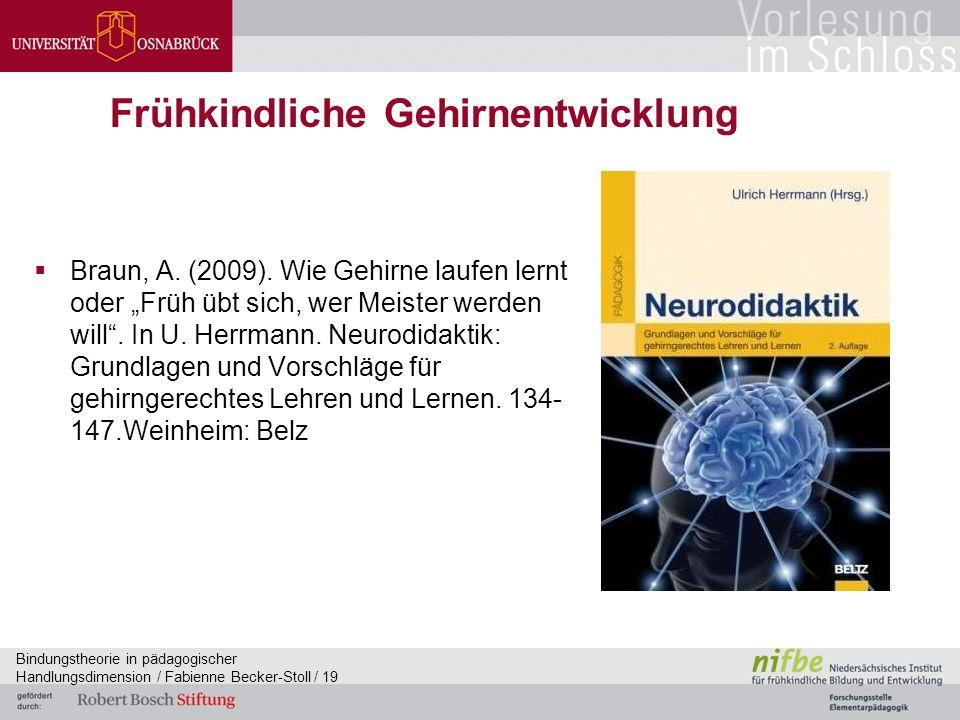 Bindungstheorie in pädagogischer Handlungsdimension / Fabienne Becker-Stoll / 19 Frühkindliche Gehirnentwicklung  Braun, A.