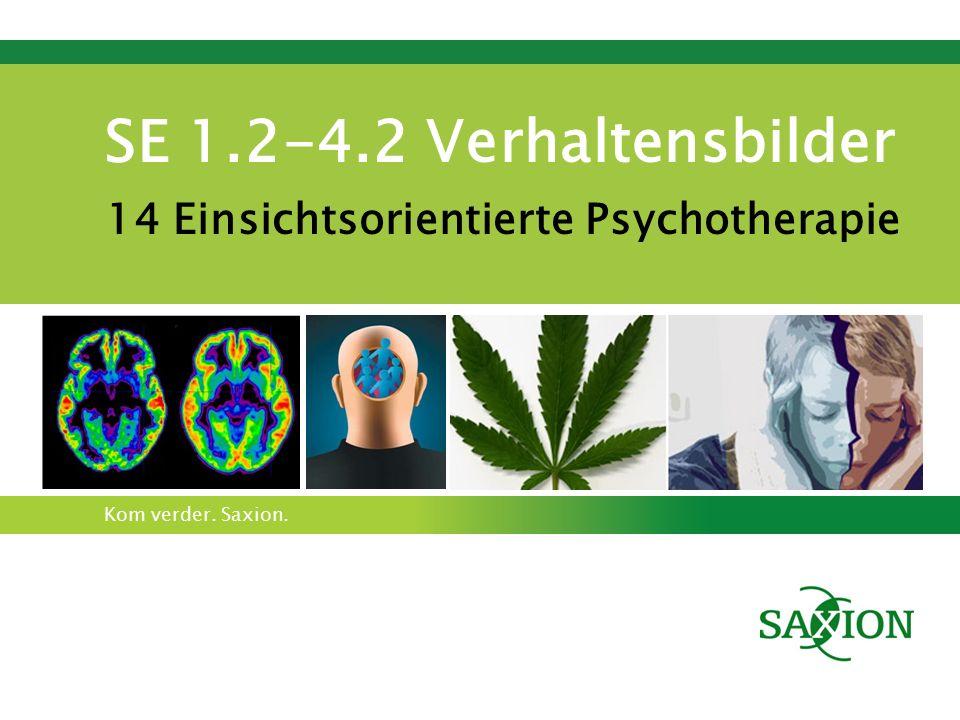 Kom verder. Saxion. SE 1.2-4.2 Verhaltensbilder 14 Einsichtsorientierte Psychotherapie