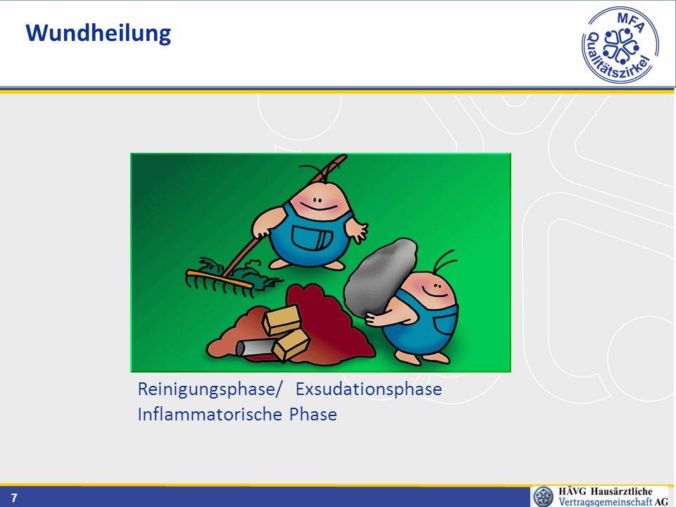 7 Reinigungsphase/ Exsudationsphase Inflammatorische Phase Wundheilung