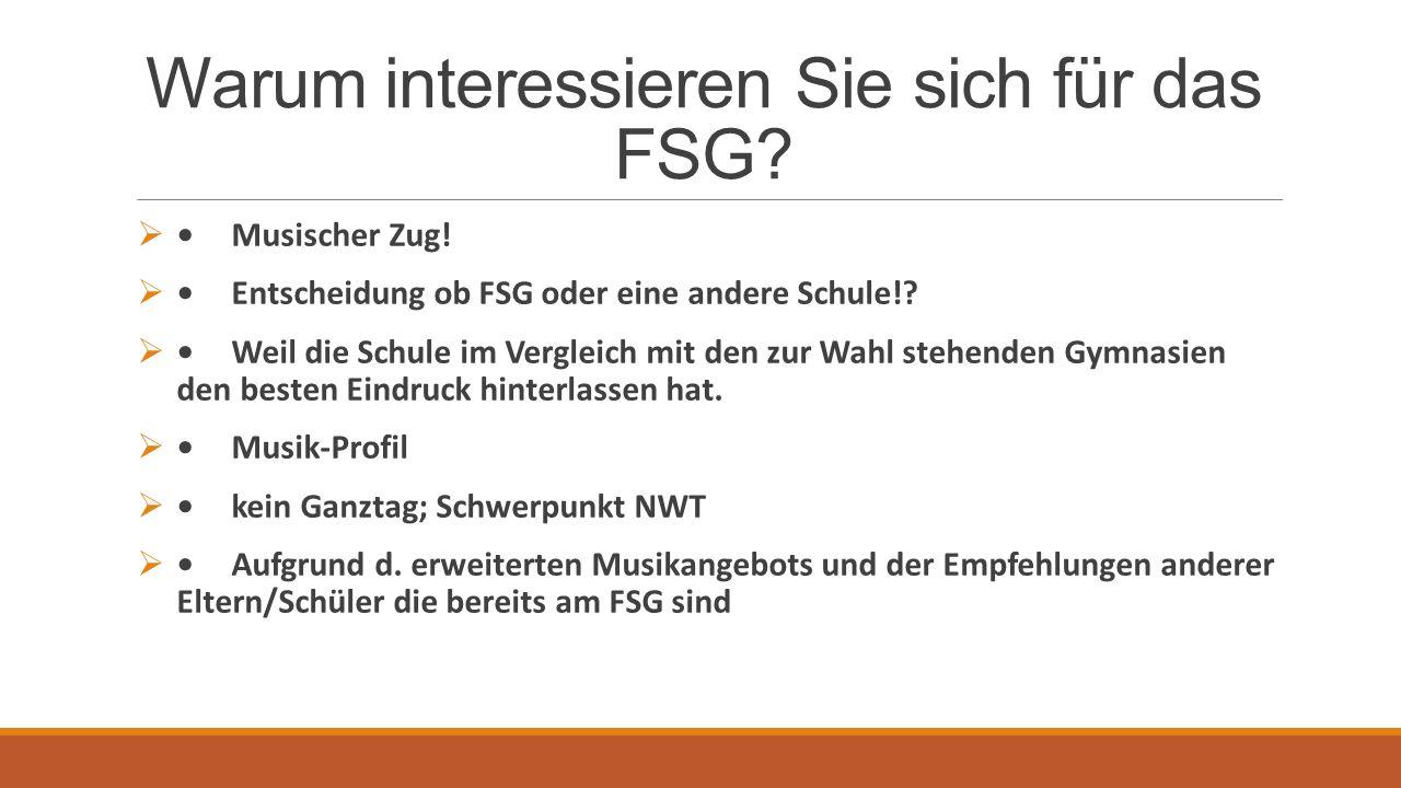 Warum interessieren Sie sich für das FSG. Musischer Zug.