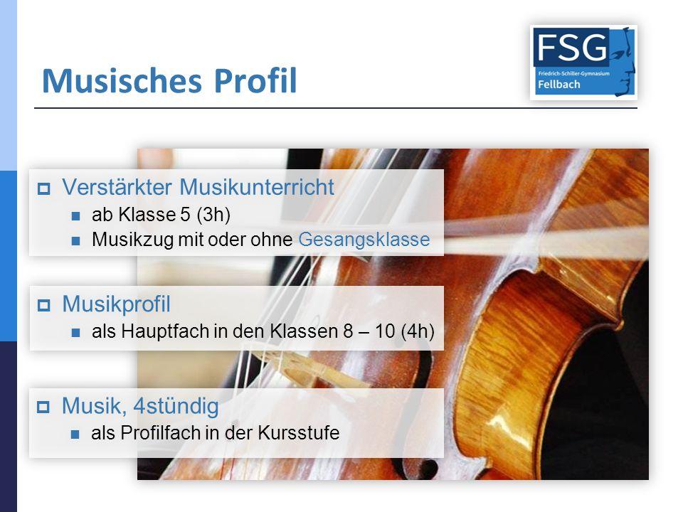 Musisches Profil  Verstärkter Musikunterricht ab Klasse 5 (3h) Musikzug mit oder ohne Gesangsklasse  Verstärkter Musikunterricht ab Klasse 5 (3h) Musikzug mit oder ohne Gesangsklasse  Musikprofil als Hauptfach in den Klassen 8 – 10 (4h)  Musikprofil als Hauptfach in den Klassen 8 – 10 (4h)  Musik, 4stündig als Profilfach in der Kursstufe  Musik, 4stündig als Profilfach in der Kursstufe