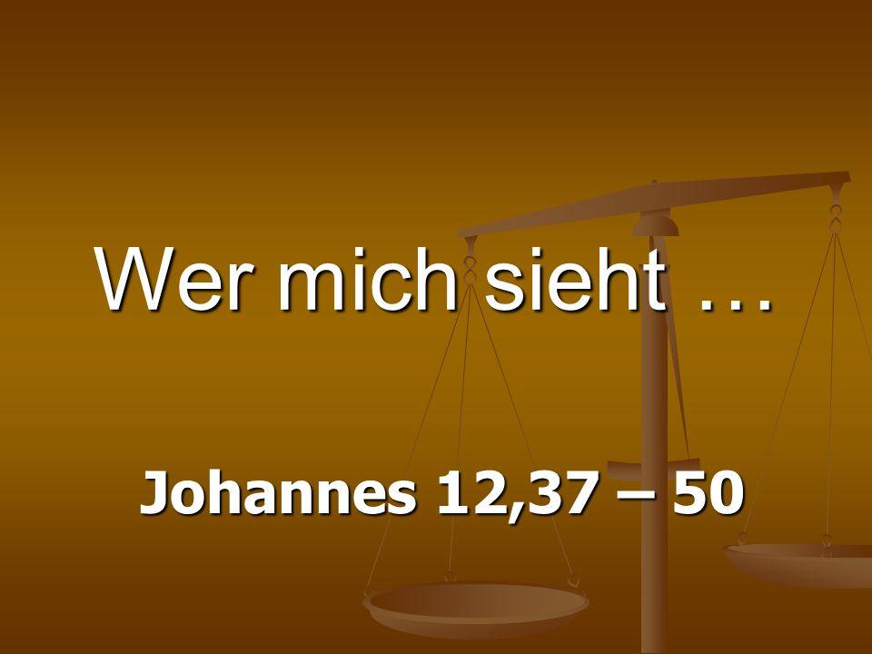 Wer mich sieht … Johannes 12,37 – 50