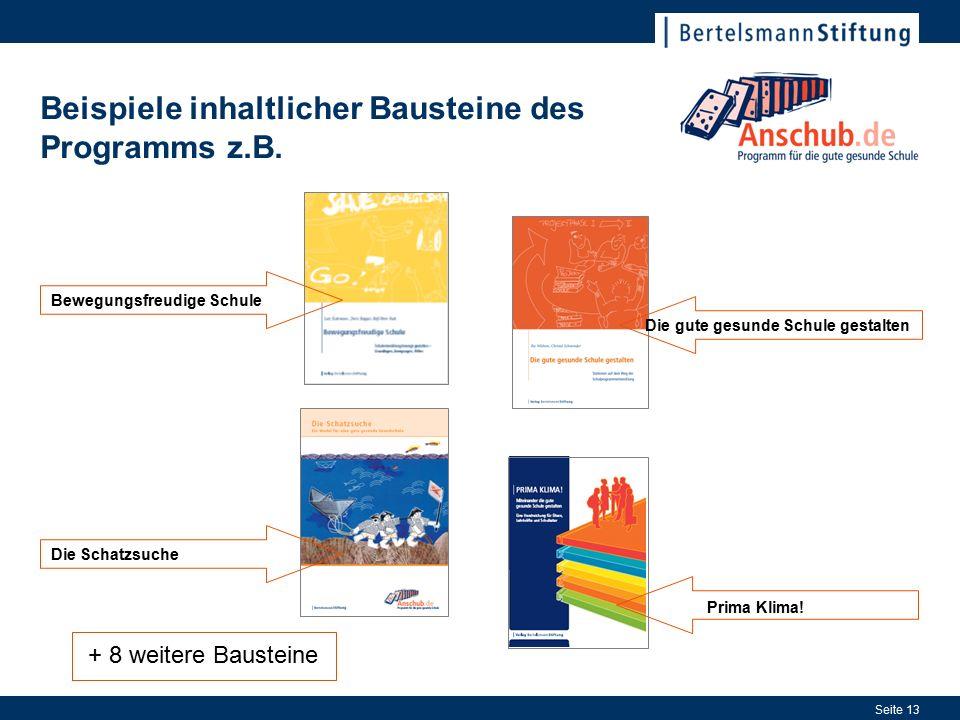 Seite 13 Beispiele inhaltlicher Bausteine des Programms z.B.