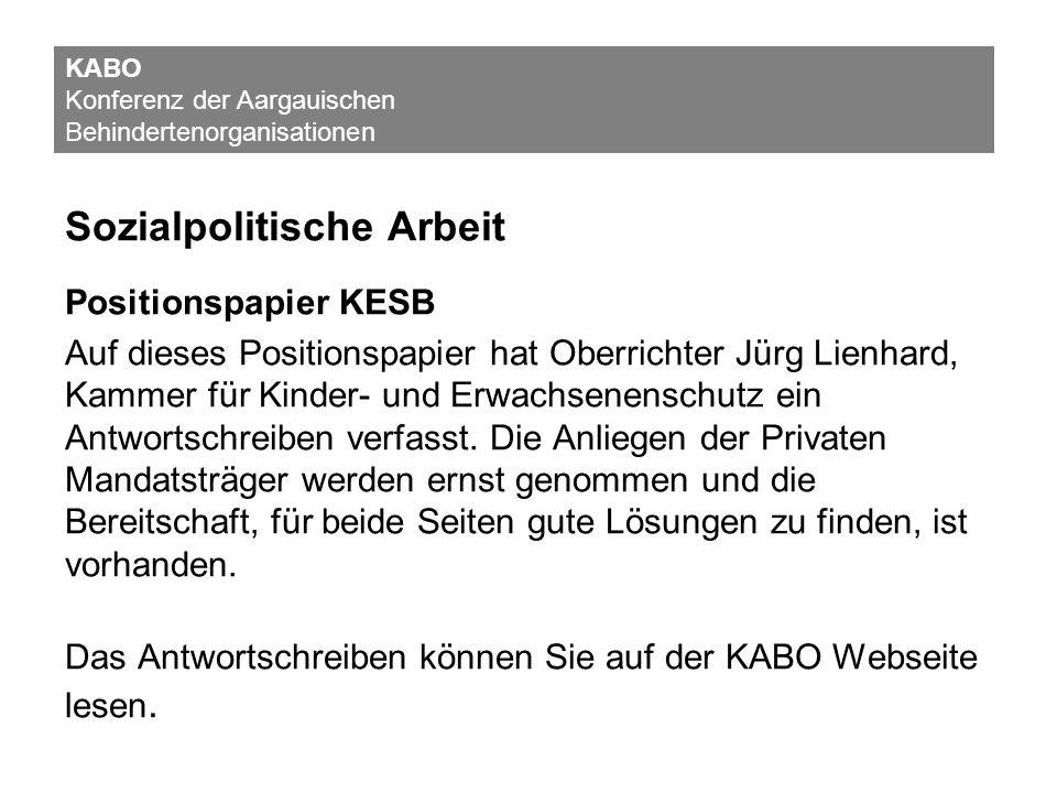 Sozialpolitische Arbeit Positionspapier KESB Auf dieses Positionspapier hat Oberrichter Jürg Lienhard, Kammer für Kinder- und Erwachsenenschutz ein An