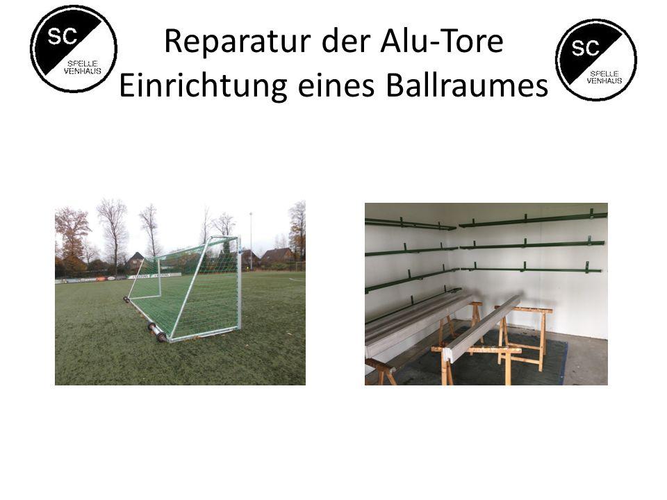 Reparatur der Alu-Tore Einrichtung eines Ballraumes