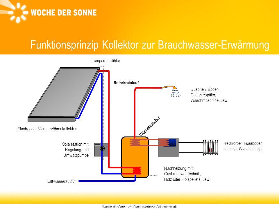 Woche der Sonne c/o Bundesverband Solarwirtschaft Funktionsprinzip Kollektor zur Brauchwasser-Erwärmung Flach- oder Vakuumröhrenkollektor Solarstation