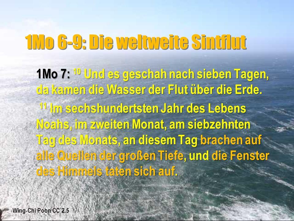 1Mo 6-9: Die weltweite Sintflut 1Mo 7: 10 Und es geschah nach sieben Tagen, da kamen die Wasser der Flut über die Erde. 11 Im sechshundertsten Jahr de
