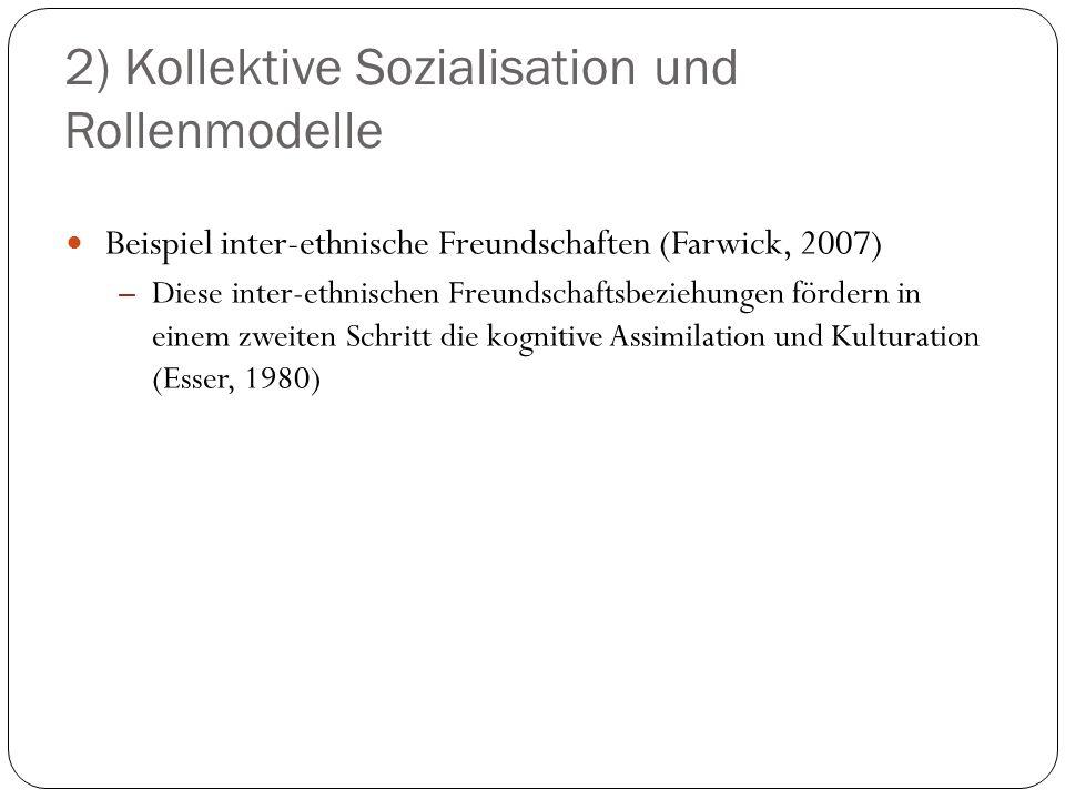 2) Kollektive Sozialisation und Rollenmodelle Beispiel inter-ethnische Freundschaften (Farwick, 2007) – Diese inter-ethnischen Freundschaftsbeziehunge