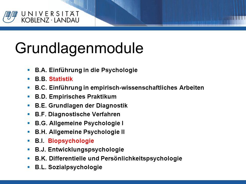 Grundlagenmodule  B.A. Einführung in die Psychologie  B.B. Statistik  B.C. Einführung in empirisch-wissenschaftliches Arbeiten  B.D. Empirisches P