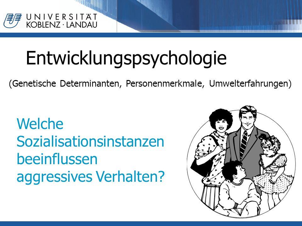 Entwicklungspsychologie (Genetische Determinanten, Personenmerkmale, Umwelterfahrungen) Welche Sozialisationsinstanzen beeinflussen aggressives Verhalten?