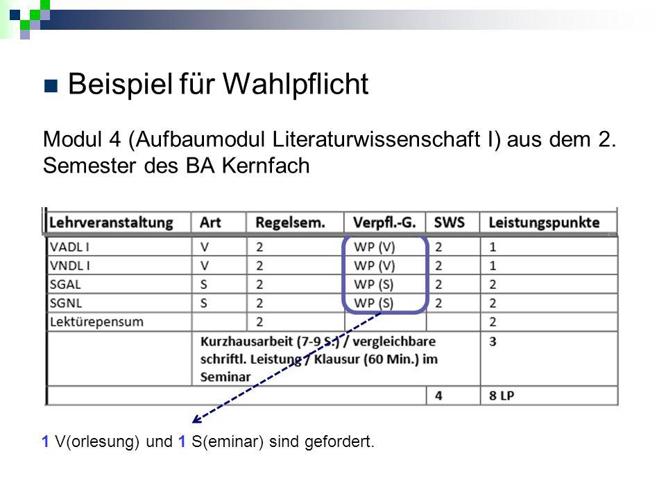 Beispiel für Wahlpflicht Modul 4 (Aufbaumodul Literaturwissenschaft I) aus dem 2.