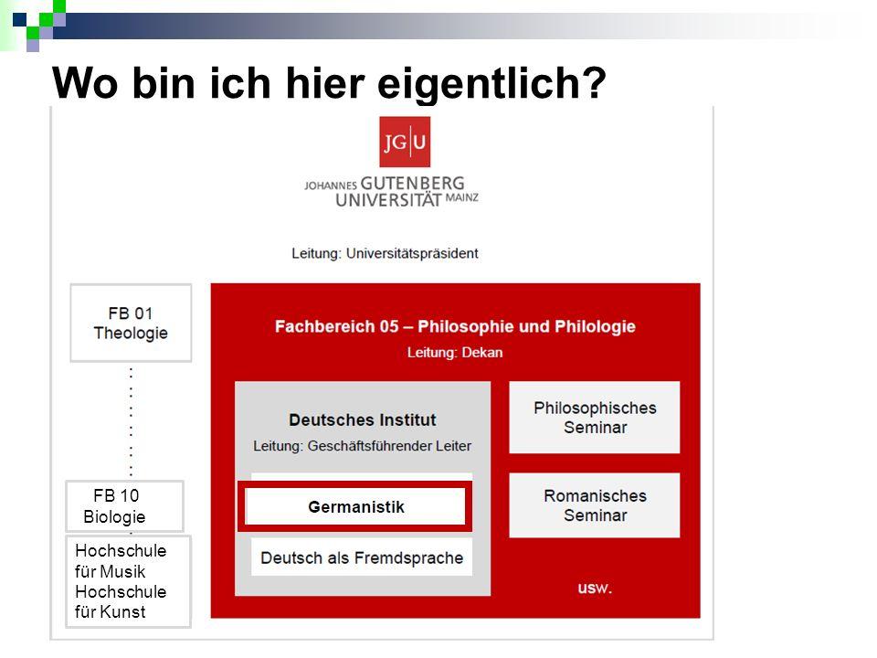 Die Info-Broschüre zu JOGU-StINe (u.a.